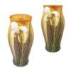 Lidded Springtime Iris