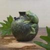 Frog's Life