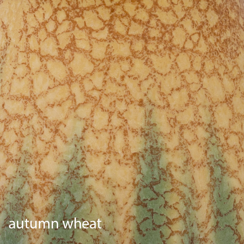 AutumnWheat-2